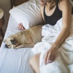 Dog sleeping on bed with blonde woman